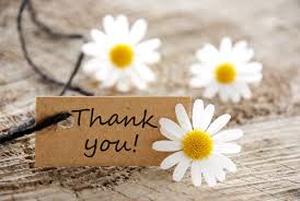 thank you daisies