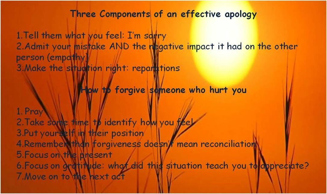 How To Apologize and Forgive : Emotional Sobriety And Food
