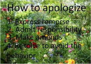 4 Steps to an apology