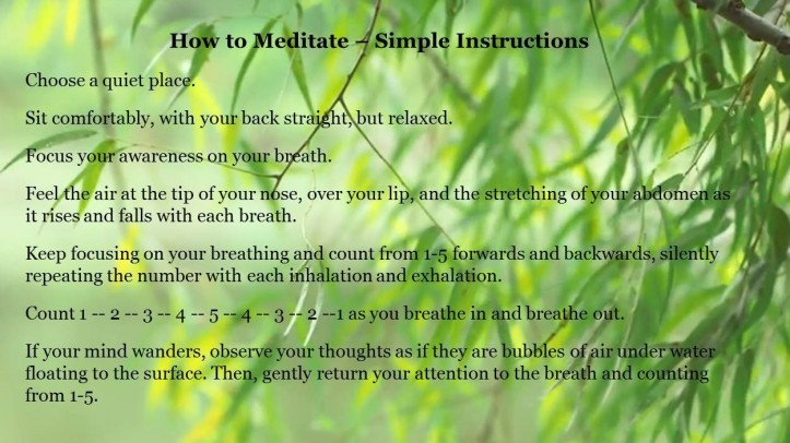 Meditation Simple Instructions